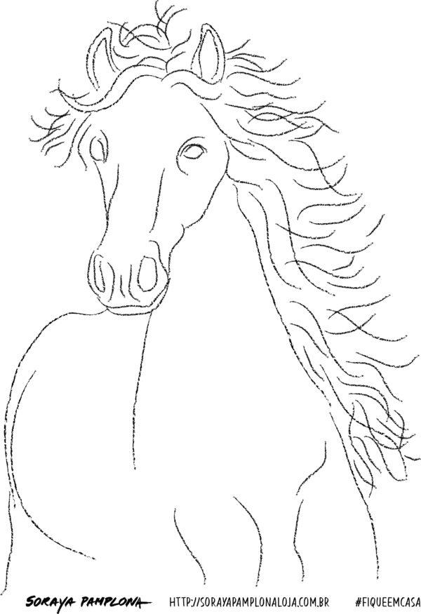 soraya cavalo